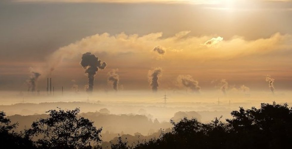 Carbon budget urges greater ambition from government